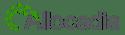 Allocadia-Logo-RGB-250